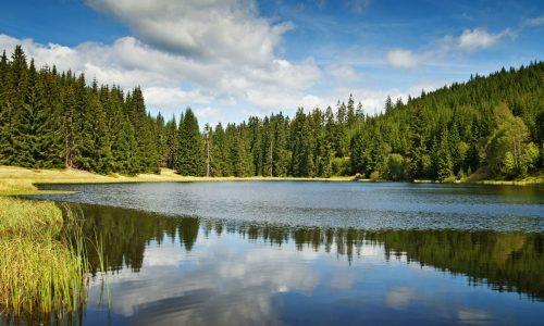 Lake Plastira view